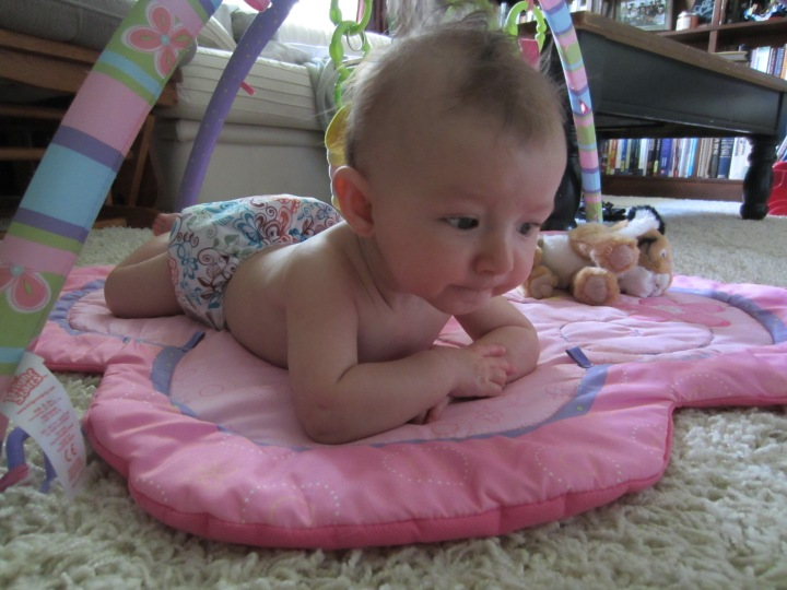 Ginny Ponders the Value of Cloth in her Lovelace Pocket Diaper