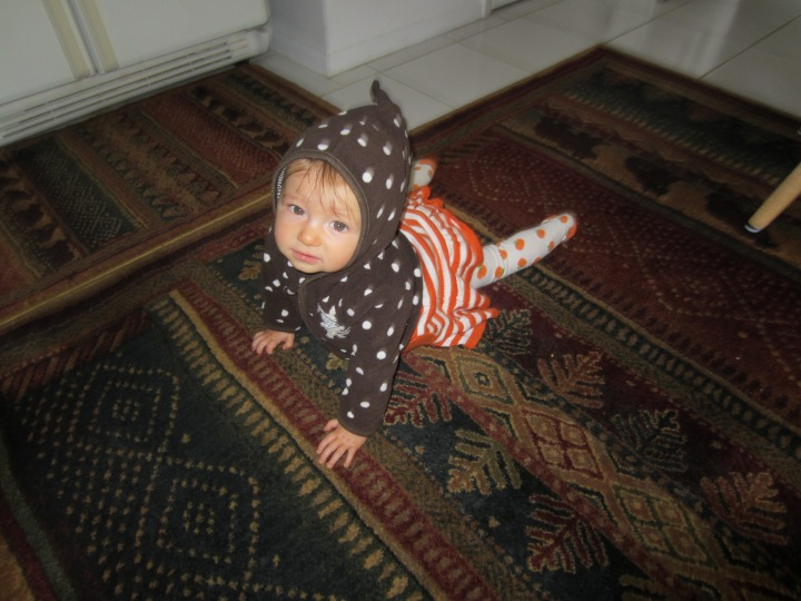 Ginny is crawling! Granted, in this pictures, her legs are a little outstretched, but I wanted to show off her cute pumpkin tights. :)