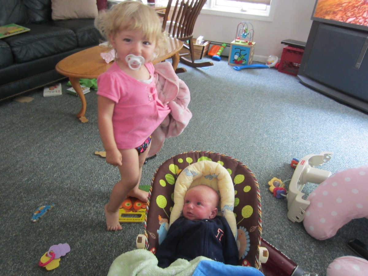 Cloth Diaper Review Bumgenius Freetime All In One